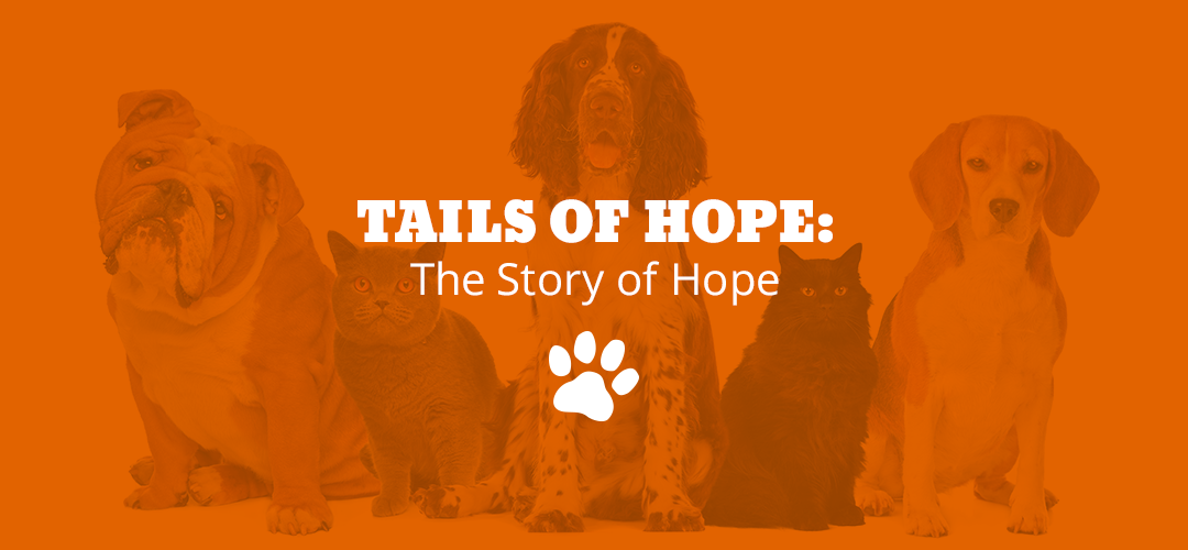 tails of hope