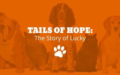 Tails of Hope: The Story of Lucky