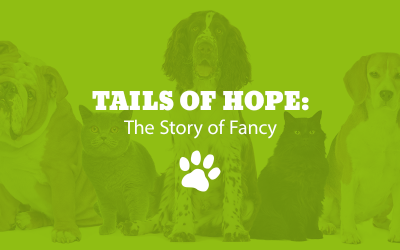 Tails of Hope: The Story of Fancy
