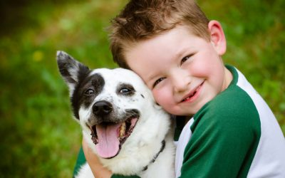The Many Benefits of Pets
