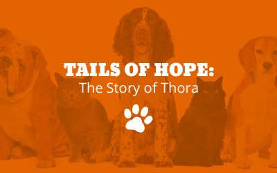 Tails of Hope: The Story of Thora