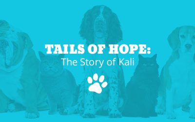 Tails of Hope: The Story of Kali