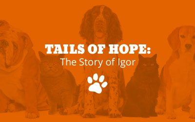 Tails of Hope: The Story of Igor