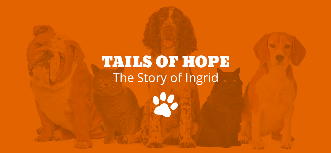 Tails of Hope: The Story of Ingrid
