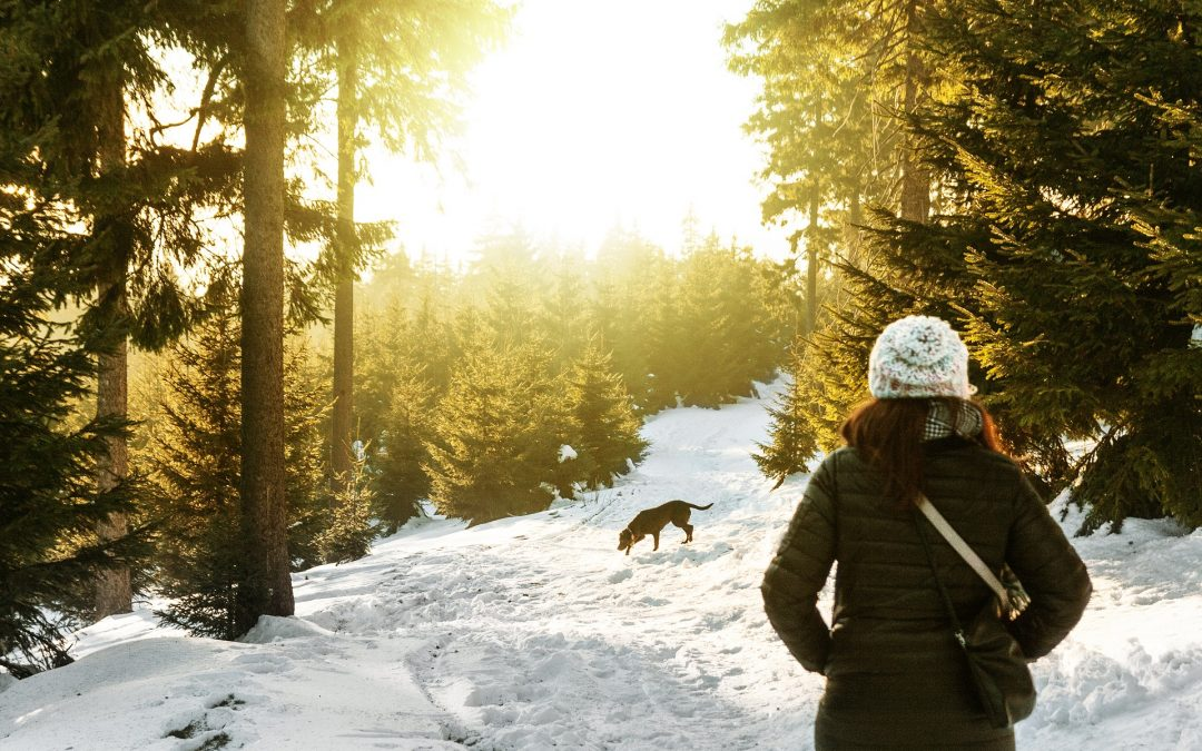 Weathering Winter Walks: How to Keep Your Dog Safe