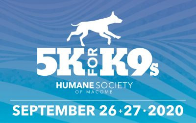 5K for K9s Virtual Run/Walk Helping Abandoned and Abused Animals