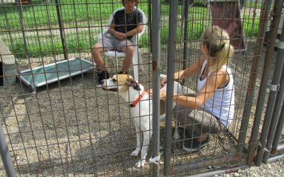 Meet Our April Humane Hero: Amy Johnson