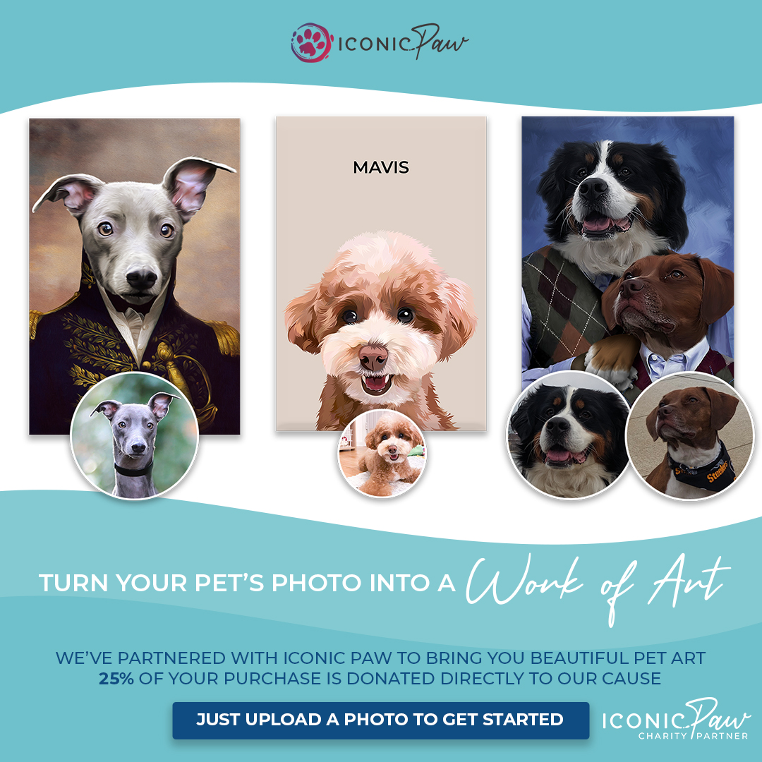 Shop IconicPaw and give back to the Humane Society of Macomb