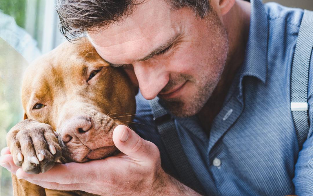 5 Reasons You Should Adopt a Shelter Dog